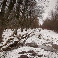 Зима :: Migeshka Mi