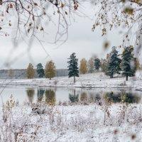 Первый снег :: Александр Решетников