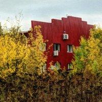 Красный фасад за пижмовой поляной :: Ирина Сивовол