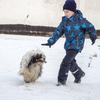Бия играет с мальчиком :: Лариса Батурова
