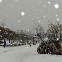 Дмитров засыпает снегом. :: Анатолий. Chesnavik.