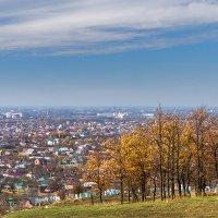 Крайние дни осени :: Игорь Сикорский