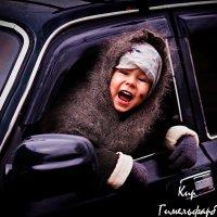 Бежать будем с одной скоростью — с моей. :: Кирилл Гимельфарб
