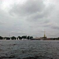Регата у Петропавловской крепости. :: Виктор Егорович