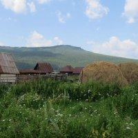 В Башкирской деревне :: Вера Щукина