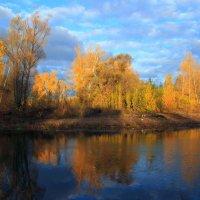 Осень листья рассыпает - золотую стаю ... :: Евгений Юрков