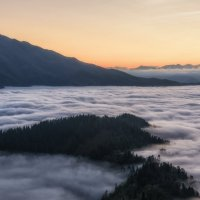 Пихтовый остров в море тумана... :: Александр К.