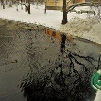Под милым мостиком... :: Sergey Gordoff