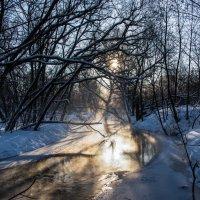 Немного солнца в холодной воде. :: Владимир Безбородов