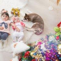новогоднее настроение :: Светлана Лукьянчикова