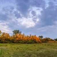 Осень . :: Владимир