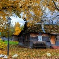 Домик в деревне. :: Владимир Гришин