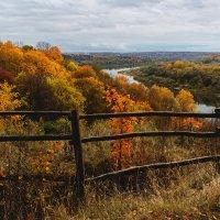 Золотая осень.Излучина реки Оки. :: Владимир Гришин