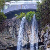Водопад в парке Гонконга :: Анатолий Иргл