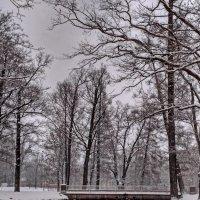 Снег :: Олег Попков