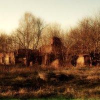 Руины старой усадьбы :: Aleksandr Ivanov67 Иванов