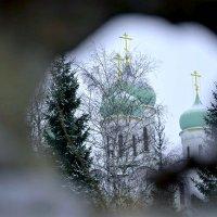 Взгляд сквозь забор. :: Михаил Столяров