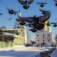 голубиный вальс :: Сергей Кудряшов