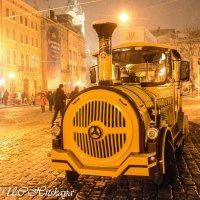 Экскурсионный паровозик :: Yelena LUCHitskaya