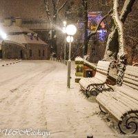 Зима :: Yelena LUCHitskaya