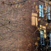 Призрак окна :: Игорь Попов