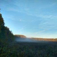 Утро туман осень :: Олег Романенко