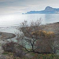 Пасмурность в устье горной реки :: Юрий Яловенко