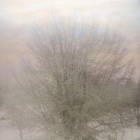 Краски за окном :: Татьяна Кадочникова