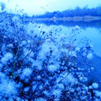 Голубая вода) :: Дина Дробина