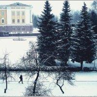 Падает снег :: muh5257