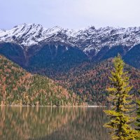 Озеро Рица. :: Евгений Кузнецов