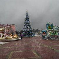 Уже новогоднее настроение :: Игорь Сикорский