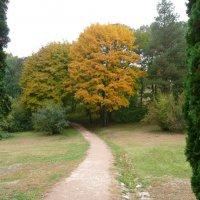 Осень в Курортном парке :: Виктор
