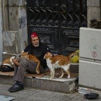 Стамбул :: iurii