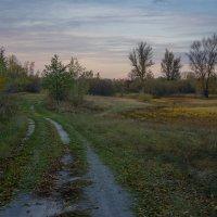 Осенний пейзаж :: Сергей Дишук