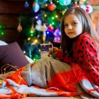 новогоднее чудо.... :: Svetlana SSD Zhelezkina