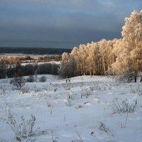 На окраине у реки Оки. :: Владимир Гришин
