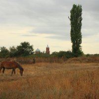 Сельский пейзаж :: Михаил Пахомов