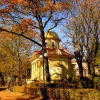 В Кисловодском курортном парке :: Нина Бутко