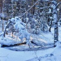 Прогулка на ручей Шиши :: Светлана Игнатьева