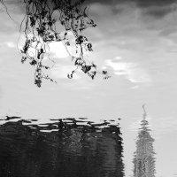 Городской пейзаж :: Tanja Gerster