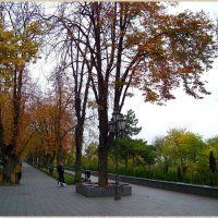 Одесские скверы.. :: Любовь К.
