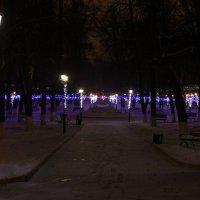 Иллюминация в парке Пушкина :: Andrew