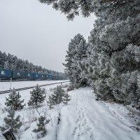 Голубой вагон бежит, качается... :: Андрей Поляков