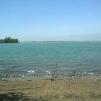 куртлинское озеро :: Роман Латышев