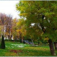 Одесские скверы осенью... :: Любовь К.