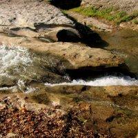 Река Ольховка  в Кисловодском курортном парке :: Нина Бутко