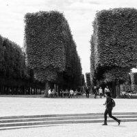 Париж,Люксембургский сад :: Наталия