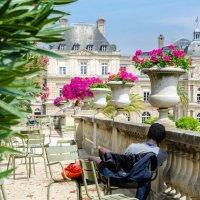 Отдых в Люксембургском саду :: Наталия