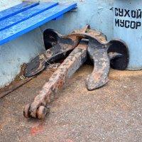 Сухой мусор :: Александр Юдин
